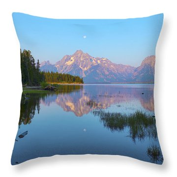 Heron On Jackson Lake Throw Pillow