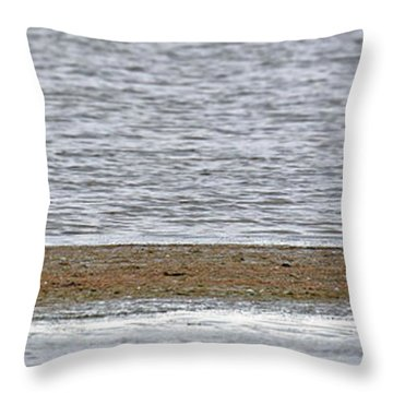 Heron On Quivira Sandbar Throw Pillow
