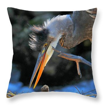 Throw Pillow featuring the photograph Heron Scratch by Debbie Stahre
