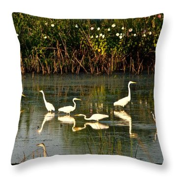 Heron Sunrise Throw Pillow by Rita Mueller
