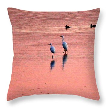 Herons At Sunrise Throw Pillow