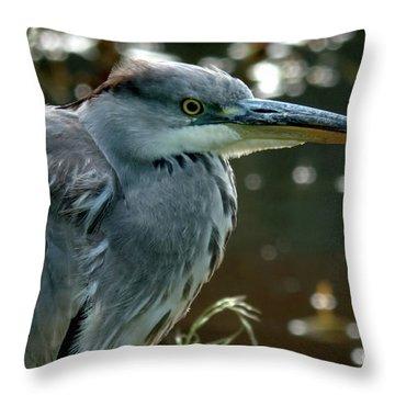 Herons Looking At You Kid Throw Pillow