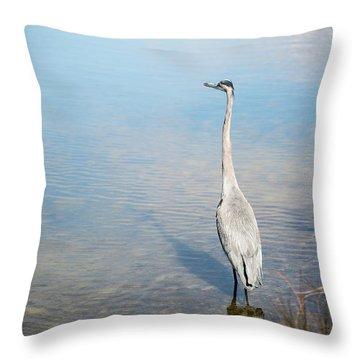 Heron's Watch Throw Pillow
