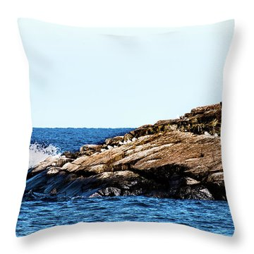 Herring Gull Picnic Throw Pillow