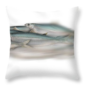 Herring School Of Fish - Clupea - Nautical Art - Seafood Art - Marine Art - Game Fish Throw Pillow