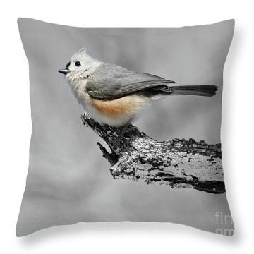He's So Pretty Throw Pillow