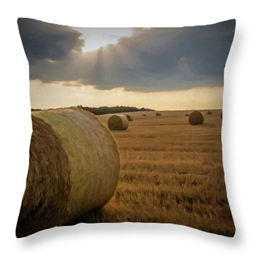 Hey Bales And Sun Rays Throw Pillow by David Dehner