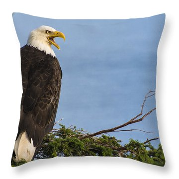Hey Throw Pillow by Gary Lengyel