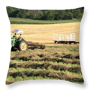 Hey Hay Throw Pillow by Alan Look