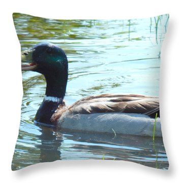 Hey I Found Good Eats Over Here Throw Pillow