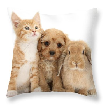 Hey, Move Over, You're Upstaging Me Throw Pillow