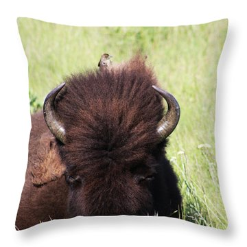 Hey There Is A Bird On Your Head Throw Pillow