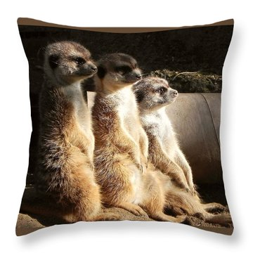 Hey What's Up? Throw Pillow