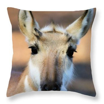 Hey You Throw Pillow by Karol Livote