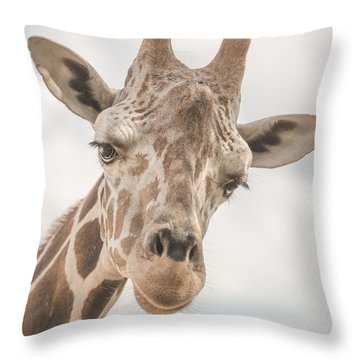 Hi There, I'm A Giraffe Throw Pillow by David Collins