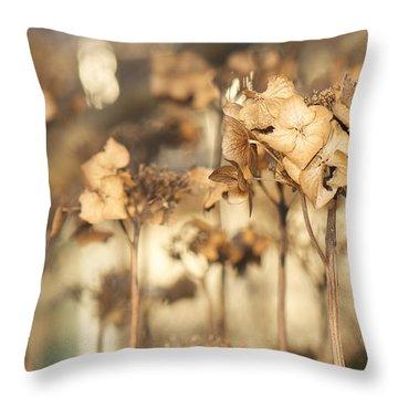 Throw Pillow featuring the photograph Hibernating Beautifully by Lisa Knechtel