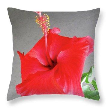 Hibiscus #2 Throw Pillow