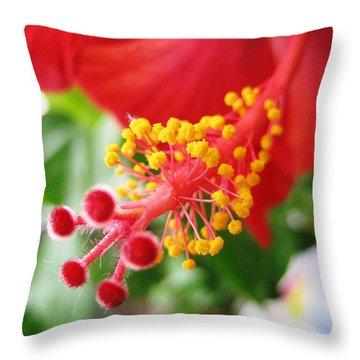 Hibiscus #3 Throw Pillow