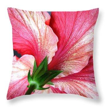 Hibiscus #5 Throw Pillow