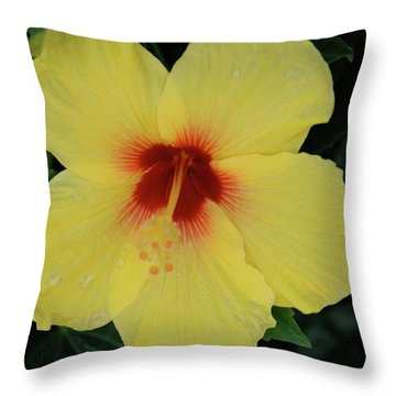 Sun Lover Hibiscus Throw Pillow