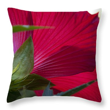 Throw Pillow featuring the photograph Hibiscus by Charles Harden
