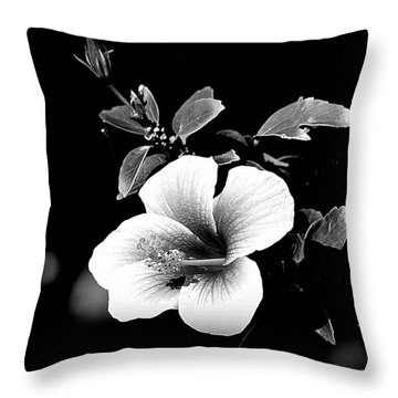 Throw Pillow featuring the photograph Hibiscus In The Dark by Lori Seaman