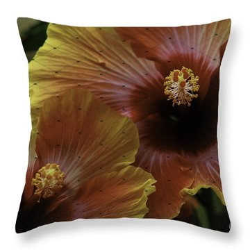 Throw Pillow featuring the photograph Hibiscus by Lori Mellen-Pagliaro