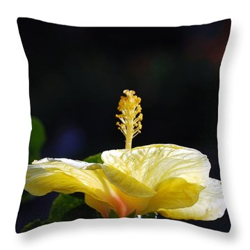 Throw Pillow featuring the photograph Hibiscus Morning by Debbie Karnes