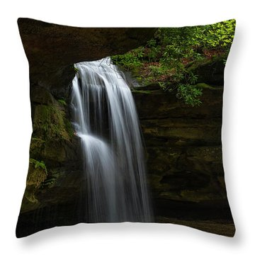 Hidden Away... Throw Pillow