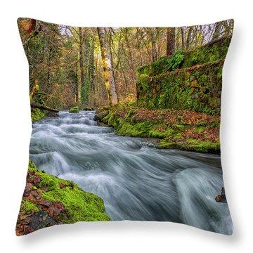 Hidden Creek Throw Pillow