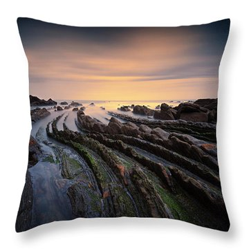 Hidden Dragon Tails Throw Pillow