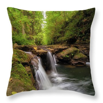 Hidden Falls At Rock Creek Throw Pillow by David Gn