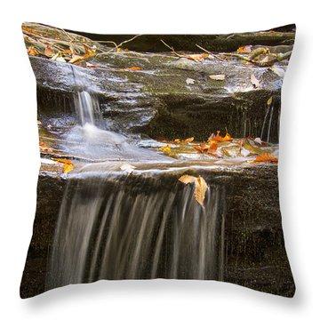 Hidden Falls Detail Throw Pillow by Bob Decker