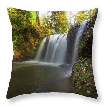 Hidden Falls In Rock Creek Throw Pillow by David Gn