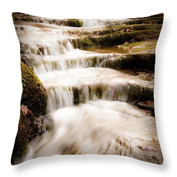 Hidden Falls Throw Pillow by Tamyra Ayles