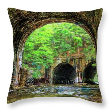 Hidden Gem Throw Pillow