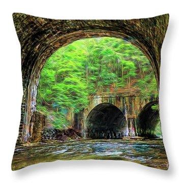 Hidden Gem Throw Pillow by Jim Lepard