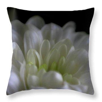 Hidden Heart Throw Pillow