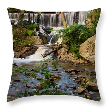 Hidden History Throw Pillow