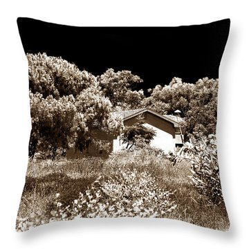 Hidden House Throw Pillow