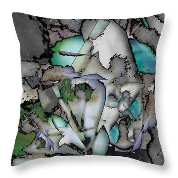Hidden Image Throw Pillow by Don Gradner