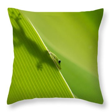 Throw Pillow featuring the photograph Hidden In Plain Sight by Christina Lihani