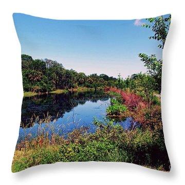 Throw Pillow featuring the photograph Hidden Lake by Gary Wonning