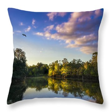 Hidden Light Throw Pillow by Marvin Spates