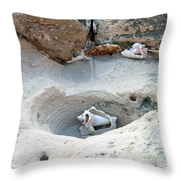 Hidden Shells On Bimini Beach Throw Pillow