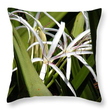 Throw Pillow featuring the photograph Hidden Swamp Lily by Rosalie Scanlon