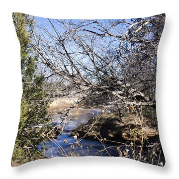 Hidden Swimming Hole Throw Pillow