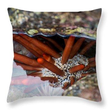 Throw Pillow featuring the photograph Hidden Treasure by Colleen Coccia
