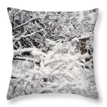 Throw Pillow featuring the photograph Hidden Treasure by Eric Liller