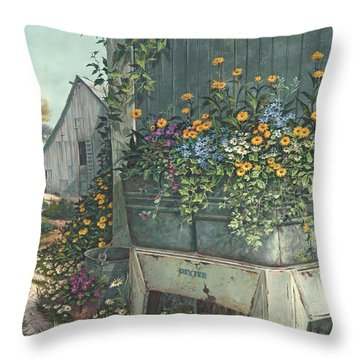 Hidden Treasures Throw Pillow